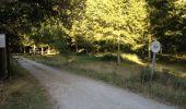 Trail Walk MOUSSOULENS - Boucle de la Combe a la Biterelle  - Photo 1