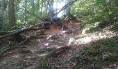 Randonnée Marche SAINT-REMY-LES-CHEVREUSE - cherman 2 - Photo 1