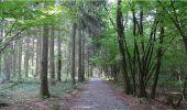 Randonnée Marche Chimay - De l'Auberge de Poteaupré à l'Abbaye N-D de Scourmont - Photo 2