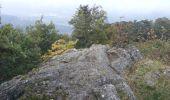 Randonnée Marche MUHLBACH-SUR-BRUCHE - Sur les chaumes de Grendelbruch - Photo 3