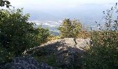 Randonnée Marche MUHLBACH-SUR-BRUCHE - Sur les chaumes de Grendelbruch - Photo 10