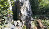 Randonnée Marche MUHLBACH-SUR-BRUCHE - Sur les chaumes de Grendelbruch - Photo 9