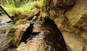 Randonnée Marche Rochefort - Nature - Circuit à la découverte de la nature autour de Han-sur-Lesse, Eprave, Villers-sur-Lesse & Lessive - Photo 26