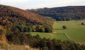 Randonnée Marche Rochefort - Nature - Circuit à la découverte de la nature autour de Han-sur-Lesse, Eprave, Villers-sur-Lesse & Lessive - Photo 22
