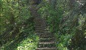 Randonnée Marche Rochefort - Nature - Circuit à la découverte de la nature autour de Han-sur-Lesse, Eprave, Villers-sur-Lesse & Lessive - Photo 31