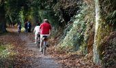 Randonnée Marche Rochefort - Nature - Circuit à la découverte de la nature autour de Han-sur-Lesse, Eprave, Villers-sur-Lesse & Lessive - Photo 48