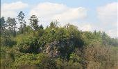 Randonnée Marche Rochefort - Nature - Circuit à la découverte de la nature autour de Han-sur-Lesse, Eprave, Villers-sur-Lesse & Lessive - Photo 24