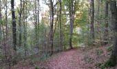 Trail Walk Durbuy - Villers ste Gertrude - Photo 5