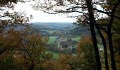 Trail Walk Durbuy - Villers ste Gertrude - Photo 4