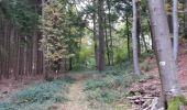 Trail Walk Durbuy - Villers ste Gertrude - Photo 1