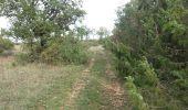 Trail Walk TURENNE - Bois de Turenne - Photo 5