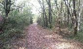 Trail Walk TURENNE - Bois de Turenne - Photo 4