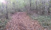 Trail Walk TURENNE - Bois de Turenne - Photo 3