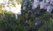Randonnée Marche OPPEDETTE - Gorge d'Oppedette - Photo 10