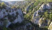 Randonnée Marche OPPEDETTE - Gorge d'Oppedette - Photo 9