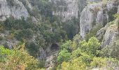 Randonnée Marche OPPEDETTE - Gorge d'Oppedette - Photo 2