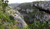 Randonnée Marche OPPEDETTE - Gorge d'Oppedette - Photo 1