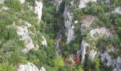 Randonnée Marche OPPEDETTE - Gorge d'Oppedette - Photo 14