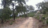 Randonnée Course à pied BORMES-LES-MIMOSAS - Rando course Gratteloup (entrainement trail) - Photo 2