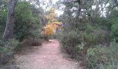 Randonnée Course à pied BORMES-LES-MIMOSAS - Rando course Gratteloup (entrainement trail) - Photo 1
