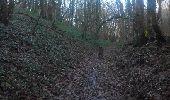 Randonnée Marche L'ISLE-D'ABEAU - balade en forêt - Photo 4