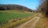 Randonnée Marche L'ISLE-D'ABEAU - balade en forêt - Photo 3