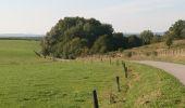 Randonnée Vélo Rochefort - Circuit vélo Han-sur-Lesse/Belvaux/Auffe/Lessive/Eprave/Lessive/Villers/RAVeL/Han-sur-Lesse - Photo 15