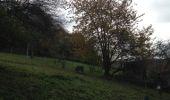 Randonnée Marche Namur - Flawinne 21 km - Photo 3