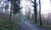 Trail Walk Couvin - Balade à Couvin - Photo 4
