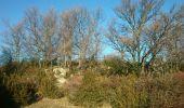 Randonnée Marche SAINT-LAURENT-SOUS-COIRON - Roche de Luchon - Photo 2