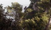 Randonnée Marche SAINT-CYR-SUR-MER - Port d'Alon La Madrague Les Vignes - Photo 2