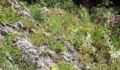Trail Mountain bike Rochefort - Nature - Circuit VTT Han-sur-Lesse - Belvaux - Wavreille - Photo 20