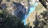 Randonnée Marche BAUDINARD-SUR-VERDON - Baudinard et les basses gorges du Verdon - Photo 4