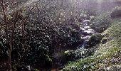 Randonnée Marche GUERARD - Guérard - Photo 1
