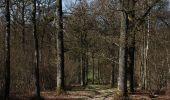 Trail Walk Ciney - CINEY- Braibant- Promenade du Bois des Aunes - Photo 6