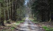 Trail Walk Ciney - CINEY- Braibant- Promenade du Bois des Aunes - Photo 8