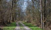 Trail Walk Ciney - CINEY- Braibant- Promenade du Bois des Aunes - Photo 7