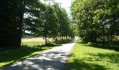 Randonnée Marche Havelange - HAVELANGE- Failon- Promenade du Chêne au Gibet - Photo 2