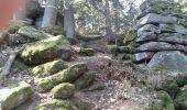Randonnée Marche OTTROTT - Mur Paien complet - Photo 22