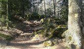 Randonnée Marche OTTROTT - Mur Paien complet - Photo 19