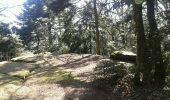 Randonnée Marche OTTROTT - Mur Paien complet - Photo 16