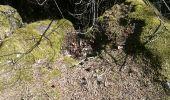 Randonnée Marche OTTROTT - Mur Paien complet - Photo 15