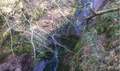 Randonnée Marche Aywaille - BE - Ninglinspo - Chefna - Fonds de Quareux - Photo 25