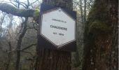 Randonnée Marche Aywaille - BE - Ninglinspo - Chefna - Fonds de Quareux - Photo 24