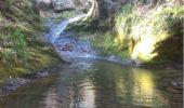 Randonnée Marche Aywaille - BE - Ninglinspo - Chefna - Fonds de Quareux - Photo 22