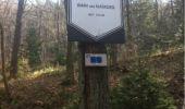Randonnée Marche Aywaille - BE - Ninglinspo - Chefna - Fonds de Quareux - Photo 21