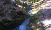 Randonnée Marche Aywaille - BE - Ninglinspo - Chefna - Fonds de Quareux - Photo 20
