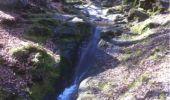 Randonnée Marche Aywaille - BE - Ninglinspo - Chefna - Fonds de Quareux - Photo 19