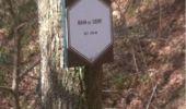 Randonnée Marche Aywaille - BE - Ninglinspo - Chefna - Fonds de Quareux - Photo 12