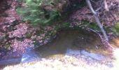 Randonnée Marche Aywaille - BE - Ninglinspo - Chefna - Fonds de Quareux - Photo 10